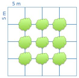 Математика 11